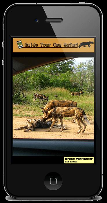 guide your own safari ebook