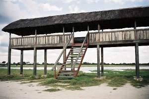 Hide in Hwange, near Main Camp