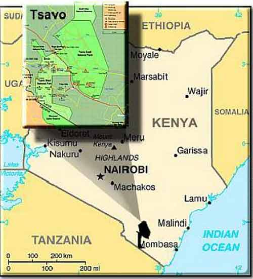 Looking for Tsavo Safari Information? Get the Facts and Answers Here