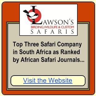 Lawsons Safaris