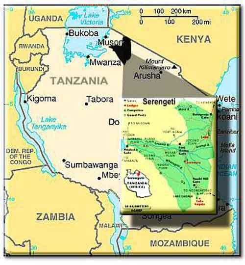 Tanzania serengeti mapp