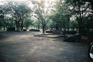 Robins Camp, Hwange