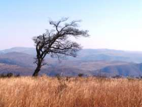 Landscape at Ithala Game Reserve