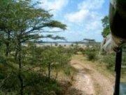 Lake Tagalala, Tanzania