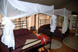 Tarangire River Camp interior