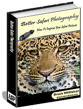 better safari photography e-book