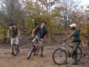 Guided bicycle game ride, Kruger
