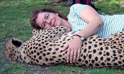 Elaine with a Harnas Cheetah