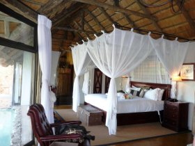 Leopard Hills suite