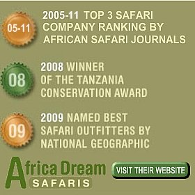 Africa Dream Safaris Review