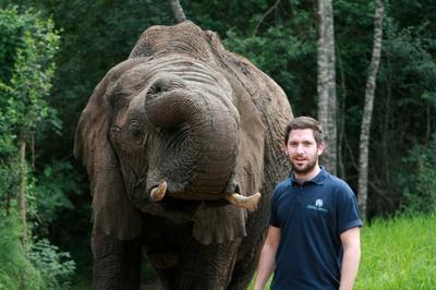 Elephant & Man